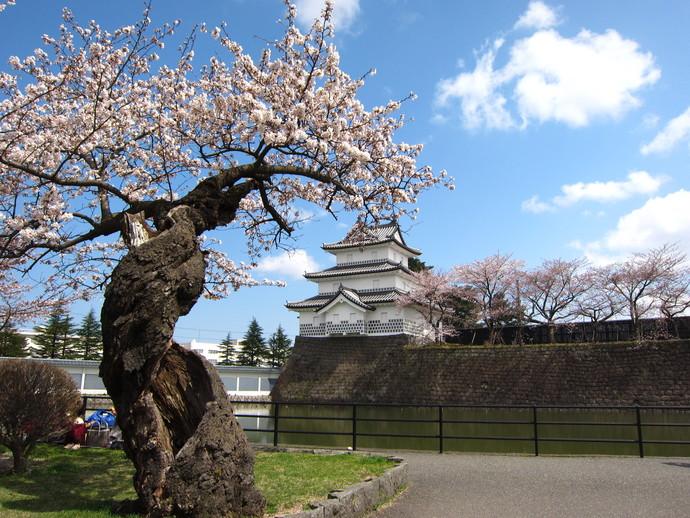 新発田市のまつり・イベント(4月~6月)|新潟県新発田市公式ホームページ