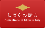 しばたの魅力 Attractions in Shibata City